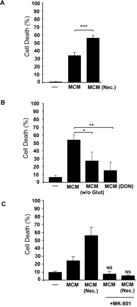 Necrotic neurons enhance microglial-induced neurotoxicity mediated by NMDAR. (A) Neurotoxicity of MCM was assayed in cell cultures of CGN after 24 hours. MCM obtained from non-stimulated cells or after stimulation with necrotic neurons for 20 hours, MCM (Nec.), were added to a final concentration of 20% to neuronal cultures. Neuronal viability was analysed by PI incorporation after 24 hours. (B) Neuronal cell death was quantified after exposure to MCM of non-stimulated cells, MCM of microglial cells cultured in glutamine-free medium, MCM (- Glutamine), or cultured with a glutaminase inhibitor, MCM (+DON). (C) The NMDAR inhibitor, MK-801, was added to neuronal cultures at the same time as MCM and neuronal viability was assayed as described before. Results are shown as mean ± SD and are representative of at least two experiments. NS, non-significant. *** p < 0.001 and * p < 0.05.