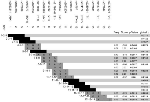 Haplotype analysis using a sliding window of three SNPs at a time for 19 SNPs with a MAF ≥ 5% in ADAM33 gene, having COPD as the phenotype of interest.