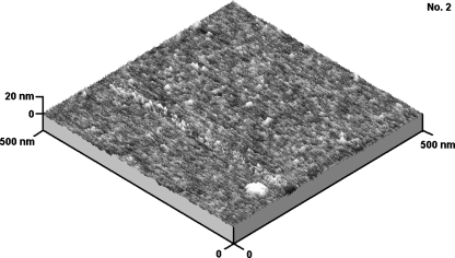"Three-dimensional AFM 500 × 500 nm image for cationomer no. 2, obtained by the ""moderate tapping"" method"