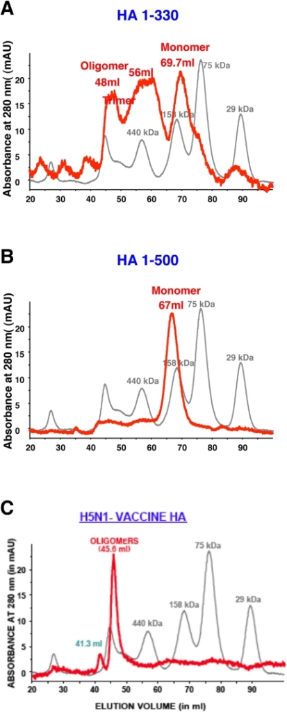 Analysis of HA protein by gel filtration chromatography.Superdex S-200 gel filtration chromatography of Flp-In derived H5N1 HA proteins. Purified H5N1 HA1 (1-330) protein (A) or the HA0 (1-500) protein (B) were subjected to gel filtration. The panels present superimposed elution profiles of purified HA proteins (blue line) overlaid with calibration standards (grey line). The elution volumes of protein species are shown in parenthesis. While purified HA 1-330 protein was presented in monomer, trimer and oligomer form (A), the HA1-500 protein was observed primarily in a monomeric form (B). Gel filtration profile of Subunit H5N1 vaccine (Sanofi Pasteur) (C) show predominance of oligomers.