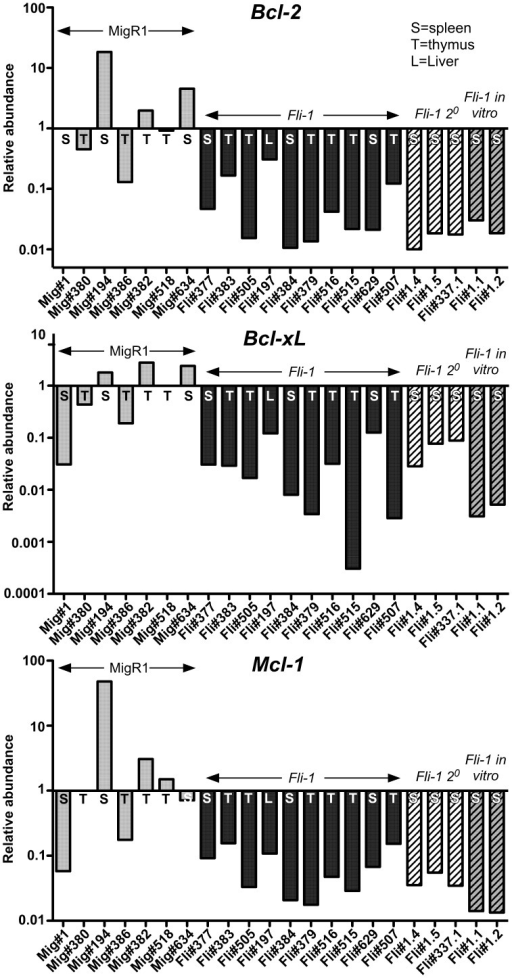 No upregulation of pro-survival Bcl-2 family mRNA in Fli-1 pre-T LBL.RNA was isolated from MigR1 control (Mig), Fli-1 primary, secondary (2°) and in vitro Fli-1 pre-T LBL cells from the thymus, spleen or liver and cDNA was subjected to Q-PCR for the expression of Bcl-2, Bcl-xL and Mcl-1 mRNA. Samples were normalized to GAPDH levels and are shown on a log scale relative to the median MigR1 value, which was set to 1. T = thymus, S = spleen, L = liver.