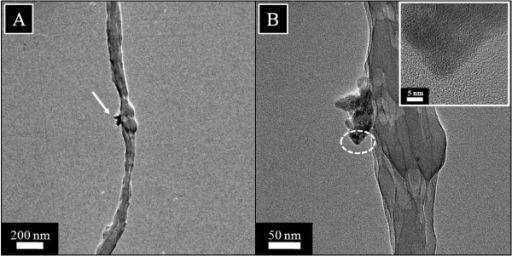 Transmission electron microscopy results of silk fibroin nanofibers containing 10% HAp NPs in low (A) and high magnifications (B). The inset in the figure (B) shows the HR-TEM of the encircled area.