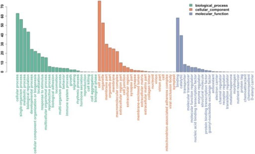Gene Ontology classification of assembled gene s in the P. trituberculatus ovary transcriptome.
