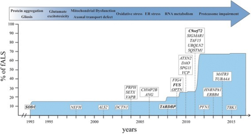 Timeline of gene discovery and pathogenic mechanisms in ALS. Schematic representation of years of discovery of most important genes implicated in ALS. Mutation in the superoxide dismutase 1 (SOD1) represent approximately 15 % of familial ALS cases (fALS), mutation in C9orf72 represent 35-40 % and both TAR-DNA-binding protein (TARDBP) and Fused in sarcoma (FUS) for 4 % each. Other genes represent less than 1 % each. Protein aggregation and gliosis are pathological hallmark of ALS and have been discovered before the beginning of the illustrated timeline. ER endoplasmic reticulum; NEFH neurofilament heavy; ALS2 alsin; DCTN1 dynactin; PRPH peripherin; SETX senataxin; VAPB vesicle-associated membrane protein-associated protein B; CHMP2B Charged multivesicular body protein 2B; ANG angiogenin; FIG4 phosphoinositide 5-phosphatase; OPTN optineurin; ATXN2 ataxin 2; DAO D-amino acid oxidase; SPG11 spastic paraplegia 11; VCP valosin containing protein; SIGMAR1 sigma non-opioid intracellular receptor 1; TAF15 TATA-box binding protein associated factor 15; UBQLN2 ubiquilin-2; SQSTM1 sequestosome 1; PFN1 profilin-1; HNRNPA1 heterogeneous nuclear ribonucleoprotein A1; ERBB4 erb-2 receptor tyrosine kinase 4; MATR3 matrin 3; TUBA4A tubulin alpha-4a; TBK1 TANK-binding kinase 1