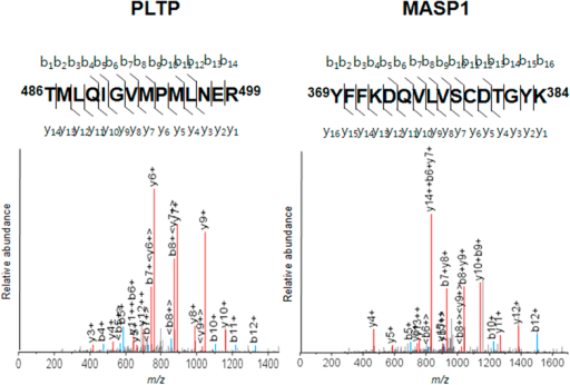 MS/MS profiles of MASP-1 (YFFKDQVLVSCDTGYK) and PLTP (TMLQIGVMPMLNER) peptides; bn and yn denote the fragment ions generated by cleavage of the peptide bond after the nth amino acid containing either the N terminus (b series) or C terminus (y series), respectively.The identified peptide sequence location is shown in bold in the protein sequence.