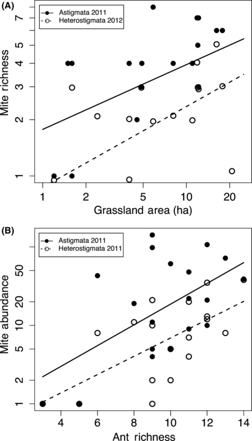 Best‐fitting models for (A) 2011 Astigmata (solid line, filled circles) and 2012 Heterostigmata (dashed line, open circles) richness included grassland area (ha), and (B) abundance of both taxa (2011) was best predicted by ant richness. Note: axes presented on log scale.