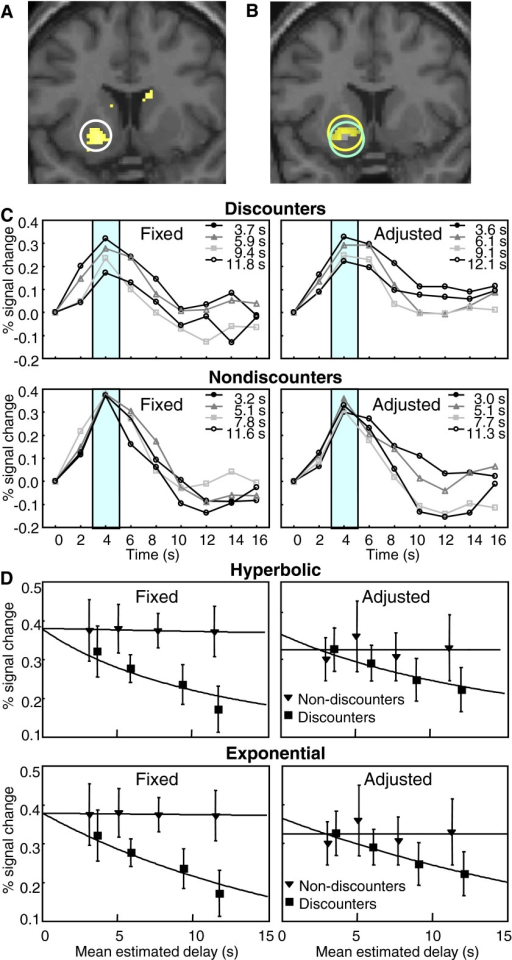 Decreases of blood-oxygen-level-dependent (BOLD) responses to reward predicting stimuli in ventral striatum during temporal discounting. A: anatomical position of BOLD responses revealed by contrast estimates based on regression using the general linear model (random effects group analysis). Circle shows cluster with significant activation at P < 0.05 (ventral striatum small volume corrected). Peak activation occurred at voxel at −18/14/-8. BOLD responses were regressed on the individual indifference values measured in each participant in the intertemporal choice task, averaged across fixed and adjusted ITI schedules for delays of 4, 6, 9, and 13.5 s. Contrast estimates were linear combinations of slope regression coefficient estimates, beta. B: 2 control analyses supporting decreases of BOLD responses in ventral striatum during temporal discounting. Yellow (upper) circle: better correlation with discounted than undiscounted outcomes (P < 0.07, ventral striatum small volume correction). The regression used the differences: individually measured (discounted) indifference values minus constant (undiscounted) 20 £ outcomes instead of indifference values alone. Blue (lower) circle (same data set): slightly better correlation with individual than population averaged indifference values (P < 0.05 uncorrected). The regression used the differences: individual indifference values minus average. C: time courses of BOLD responses to stimuli predicting different reward delays, measured at peak voxel of circled area shown in A. Response peaks (green rectangles) decreased with increasing temporal delays in the 7 participants showing behavioral discounting (top) but not in the 7 nondiscounters (bottom) in fixed (left) and adjusted ITI schedules (right; peak voxels of region circled in A). Insets: PIP estimated subjective reward delays (means across 7 discounters and 7 nondiscounters, respectively). Time = 0 s refers to onset of delay predicting stimuli. D: decreases of BOLD responses to reward delay predicting stimuli. Data were averaged separately in participants showing strong or weak discounting (7 participants each, classified by median split of behavioral discounting). Percentages of signal change were measured at peaks of time courses (4 s after stimulus onset, shaded intervals in C) at peak voxel of BOLD response shown in A. The fitted curves were based on the mean subjective PIP task-estimated delays from 7 discounters and 7 nondiscounters, respectively, for objective intervals of 4, 6, 9, and 13.5 s and conformed to hyperbolic (top) and exponential functions (bottom). Data are means ± SE. All measures were from peak voxel of circled area shown in A.
