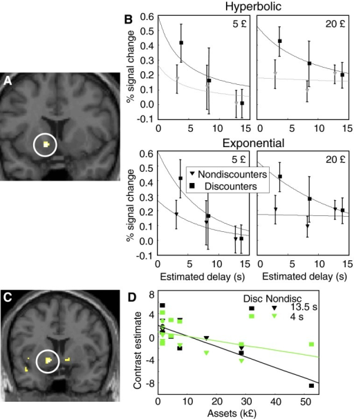 Influence of reward magnitude and personal assets on decreases of BOLD responses during temporal discounting. A: anatomical position of ventral striatum BOLD response to reward delay predicting stimuli showing significantly different discounting between 5 and 20 £ rewards (P < 0.02; ventral striatum small volume corrected; peak voxel at −8/16/-8). This experiment employed only 3 reward delays (4, 8, and 12 s) and fixed ITIs. The linear regression used the subjective delays from the PIP task and an exponential discounting factor of k = 0.06. B: steeper decreases of peak BOLD responses to reward delay predicting stimuli during temporal discounting with lower objective reward magnitude. Responses were measured at peak of temporal response at 4 s after stimuli and at peak voxel of region shown in A. Fitted curves are top: hyperbolic functions: discounters: k = 0.26 and k = 0.10 and R2 = 0.67 and R2 = 0.92 for 5 and 20 £, respectively; nondiscounters: k = 0.25 and k = 0.01 and R2 = 0.68 and R2 = 0.004 for 5 and 20 £, respectively; bottom: exponential functions: discounters: k = 0.15 and k = 0.007 and R2 = 0.88 and R2 = 0.98 for 5 and 20 £, respectively; nondiscounters: k = 0.14 and k = 0.005 and R2 = 0.83 and R2 = 0.003 for 5 and 20 £, respectively; data points are means ± SE. C: focus in ventral striatum showing significantly steeper decreases of BOLD responses to reward delay predicting stimuli in participants with higher personal assets. The linear regression tested for differences in exponential discounting between 4 and 13.5 s as function of assets, irrespective of positive or negative slopes of discounting relative to assets. The activation was significant at P < 0.05 (peak at −12/6/-8; small volume corrected for 10-mm sphere around the peak of activation shown in Fig. 3A, −18/14/-8). Regressions were also significant when testing with hyperbolic instead of exponential discounting (P < 0.05, ventral striatum small volume corrected) and when using the actual indifference reward values from each participant obtained in the intertemporal choice task (P < 0.05 uncorrected). D: correlation between contrast estimates of peak BOLD responses and assets from individual participants in the peak voxel of ventral striatal region shown in C. Ventral striatal reward discounting covaried positively with assets for 13.5-s delays in discounters (P = 0.002, R2 = 0.79; Pearson coefficient) but not in nondiscounters (P = 0.06, R2 = 0.53). These relationships varied inconsistently with 4-s delays (discounters: P = 0.11, R2 = 0.37; nondiscounters: P = 0.005, R2 = 0.77). Effects differed insignificantly between 4 and 13.5 s (discounters P = 0.26; nondiscounters: P = 0.53; z test). Contrast estimates reflect the fit with linear combination of regressors.