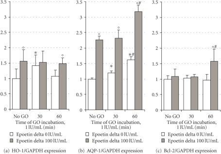 Quantitative real-time RT-PCR analysis of HO-1 (a), AQP-1 (b), and Bcl-2 (c) expressions in mixed hTECs under basal conditions and after GO-induced oxidative stress (1 IU/mL) either or not in the presence of epoetin delta (100 IU/mL). GAPDH was used as endogenous control housekeeping gene. Preconditioning the cells with EPO resulted in a significant upregulation of HO-1 and AQP-1 mRNA. GO-induced oxidative stress further increased HO-1, AQP-1, and Bcl-2 mRNA expressions with maximum levels 60 minutes after induction of oxidative stress. Data are presented as the mean ± SD of triplicate determinations of 2 runs (i.e., 6 values each). *P < .05 versus no GO, °P < .05 versus epoetin delta 0 IU/mL, #P < .05 versus 30 minutes GO incubation.