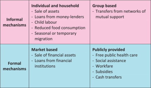 Mechanisms for coping with financial shocks. Source: World Bank (2001)