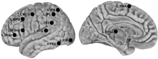 Locations of seed ROIs.Seeds are presented as overlaid black circles. MNI coordinates of these seeds are provided in Table 2. L.IOC = Left Inferior Occipital Gyrus, L.FFG = Left Fusiform Gyrus, L.STG = Left Superior Temporal Gyrus, L.TPJ = Left Temporoparietal Junction, L.IPS = Left Inferior Parietal Lobule, L.IPS = Left Intraparietal Sulcus, L.PCG = Left Precentral Gyrus, L.SMA = Left Supplementary Motor Area, L.IFGop = Left Inferior Frontal Gyrus pars Opercularis, L.IFGtr = Left Inferior Frontal Gyrus pars Triangularis, L.MFG = Left Middle Frontal Gyrus, L.THAL = Left Thalamus.