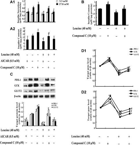 The Effects Of AICAR Or Compound C In INS-1 And RIN M5F
