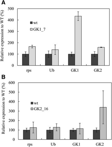 Relative mRNA abundance in the wild-type and glycerol kinase (GK) gene transformants. Gene expression was evaluated in the GK1_7 (A) and GK2_16 (B) transformants, with housekeeping genes rps and Ub as controls.