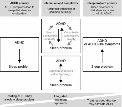Conceptual model of the modes of interaction between ADHD and sleep. ADHD attention-deficit/hyperactivity disorder