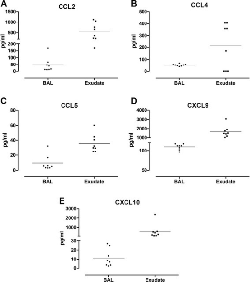 Levels of chemokines CCL2 (a), CCL4 (b), CCL5 (c), CXCL9 (d) and CXCL10 (e) measured in bronchoalveolar lavage (BAL) and bronchoabsorptive matrix exudate