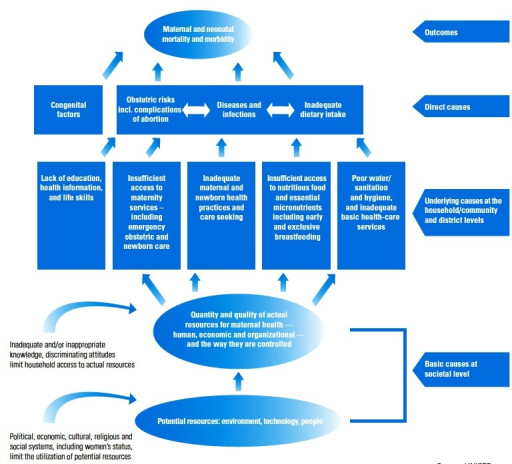 Conceptual framework for maternal and newborn mortality and morbidity (UNICEF 2009)
