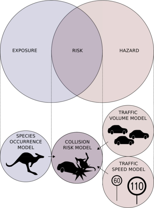 "Diagram of modeling framework. Three submodels are used to generate covariates used in the collision model per the ""risk equals exposure multiplied by hazard"" analytical framework."