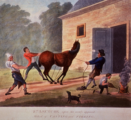 <p>The second in a series of four numbered prints satirizing the recently opened Royal Veterinary College in London. In this print, a horse is restrained with ropes held by three men outside the opened doors of a blacksmith's shop; a fourth man with bellows works a fire to the right; a small dog stands in the foreground.</p>
