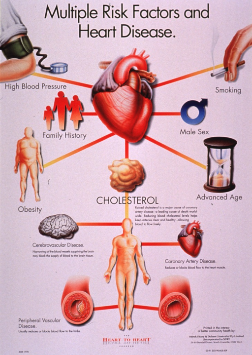 <p>Predominantly white poster with black and red lettering.  Title at top of poster.  Visual images are color illustrations of a heart and many things that can influence heart health.  These include a burning cigarette, an arm with a blood pressure cuff on it, a brain (i.e., cerebrovascular disease), an overweight human figure, etc.  Publisher information in lower right corner.</p>