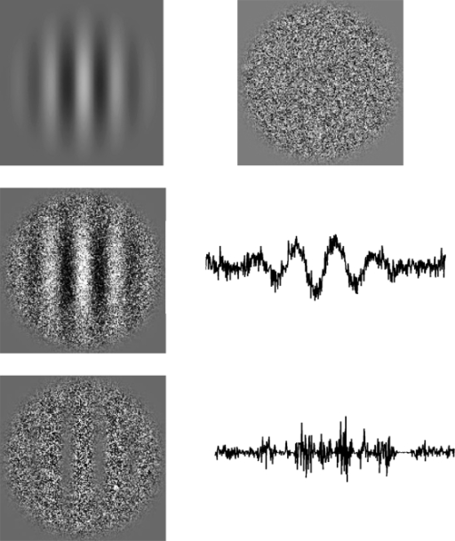 Visual stimuli representation.(Top row) Gabor patch signal (left), and carrier consisting of Gaussian noise (right). (Middle row) the spatial representation for luminance modulated (first order) stimuli. (Bottom row) the spatial representation for contrast modulated (second order) stimuli.