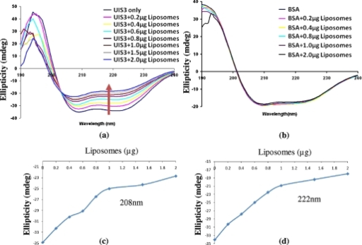 CD analysis of PfUIS3130-229-liposome complexes. a, CD spectra (240-190 nm) of PfUI3 as a function of liposome concentration. Different amounts of phospholipid liposomes were used (ranging from 0.2 to 2.0 μg) in these experiments, while PfUIS3130-229 was kept constant. The colored lines indicate spectra in the presence of different concentrations of phospholipid vesicles. Upon titration of liposomes, distinct changes in the CD moments of PfUIS3130-229 spectra were observed implying conformational changes. b, CD spectra of BSA under similar conditions. c and d, the conformational changes in PfUIS3130-229 as a function of liposome concentration as probed by monitoring change in ellipticity at 202 nm (c) and at 222 nm (d).