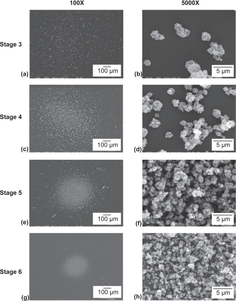 Scanning electron micrographs of 1.0 mg/g propellant suspension diesel exhaust particle aerosols deposited on stage 3–6 of the nonviable cascade impactor operated at 60 L/min.