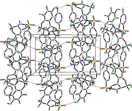 Crystal packing of the title compound. Hydrogen bonds are shown as dashed lines. For the sake of clarity, H atoms not involved in the interactions have been omitted.