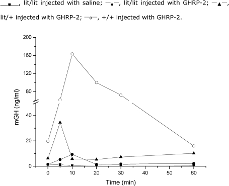 Mouse GH (mGH) serum concentrations were determined by a sensitive RIA method (detection limit, 0.25 ng/ml). Shown here are the mGH increases after the acute administration of 10 µg GHRP-2 in lit/lit, lit/+ and +/+ mice as well as the saline injection of lit/lit mice. Three animals were used for each time point only once each and then sacrificed. In total, 18 animals were used for each of the four observations, and 72 animals were used in total.