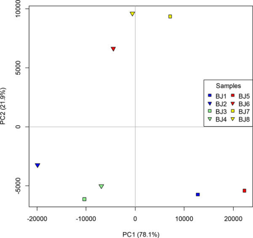 Principal co-ordinates analysis of the eight transcriptome samples mapped to the CLC assembly. Samples are male 3-5h (blue), female 3-5h (green), male 2-3h (red) and female 2-3h (yellow).