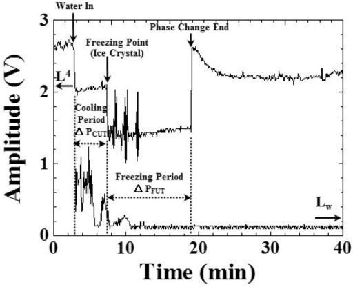 Amplitude variations of ultrasonic L4 and Lw echoes during the freezing process, indicating the water-in, freezing point (ice crystals) and phase change end during the freezing process. Water level: 25 mm; room temperature: 25 °C; shelf temperature: −30 °C; air pressure: 101.3 kPa.