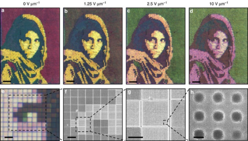 Dynamic colour tuning of arbitrary images.(a–d) Microscope images of a singular Afghan Girl image as a function of applied electric field. Nanostructure periods are chosen so colours match the original photograph at colour tuning saturation, 10 V μm−1. Scale bars (a–d), 100 μm. Defects due to fabrication errors (missing pixels) have been replaced by nearest neighbours. (e) Microscope image at 10 V μm−1 with a × 10 objective showing pixilation of the image. (f–h) SEM images of the sample before fabrication into a liquid crystal cell. The series shows the constituent nanostructure of individual pixels. Scale bars, (e) 20 μm, (f) 10 μm, (g) 5 μm, (h) 150 nm. Copyright Steve McCurry/Magnum Photos. Image rights granted by Magnum Photos New York.