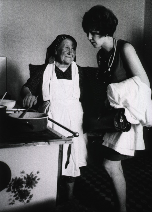 <p>Interior view of a kitchen: a young woman, holding a black bag, a white coat draped over her arm, and a stethoscope around her neck, is explaining to an old woman how prepare a proper diet for diabetics.</p>