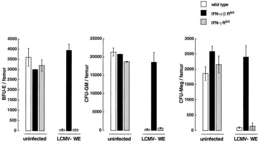 Lineage-committed  precursor cells in wild-type (open  columns) or mutant (closed columns, IFN-α/β R0/0; hatched columns, IFN-γ R0/0) mice 3 d after  LCMV-WE (2 × 106 PFU) infection. Results are presented as  the mean number (± SD) of  BFU-E, CFU-GM, or CFUMeg for duplicate methylcellulose cultures of total BM cells per  femur. Pooled data from two independent experiments with 2–3  individual mice per group are  shown.