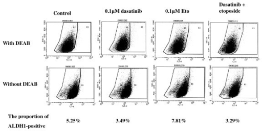 Effects of dasatinib and/or Eto on the proportion of ALDH1-positive cells in breast cancer cells. The Aldefluor assay demonstrated that dasatinib alone and dasatinib with Eto decreased the proportion of ALDH1-positive cells in MDA-MB-231 cells.