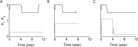 Avidity maturation of the two main clones of T cells considered in Fig. 7.Each clone is reactive to a given autoantigen (either Auto-Ag or Auto-Ag, respectively). The average of the reciprocal of avidity, , is measured for  (black) and  (gray) () for 12 years using the time evolutions of the four subclones in Fig. 7. Here, panel (A) corresponds to the upper panels (A1–A4) of Fig. 7, (B) corresponds to the middle panels (B1–B4) and (C) corresponds to the bottom panels (C1–C4). The eventual decay of the quantity , associated with the two subclones  and , shown in gray in panel (C), to a steady state level lower than the ones reached in panels (A) and (B), indicates increased average avidity relative to (A) and (B), and thus worse impact on beta cells, as demonstrated in panel (C3) of Fig. 7.
