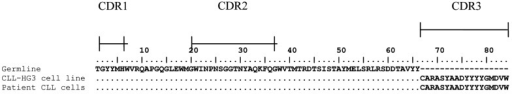 Figure 2. Identical IGHV1–2 gene rearrangements in HG3 and the patient's CLL cells.