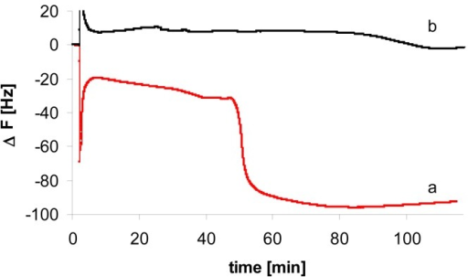 Frequency response of QCM electrode modified with probe 1 via avidin-biotin system in the presence of:(a)complementary PCR product - fragment of EPSPS gene (2.5 nM)(b)non-complementary PCR product - fragment of Adh gene (2.5 nM)The solution composition: 27 mM HEPES, 55 mM NaCl, 0.05 mM EDTA, 2.5 mM MgCl2, pH 7.7; total volume in the QCM cell: 200 μl.