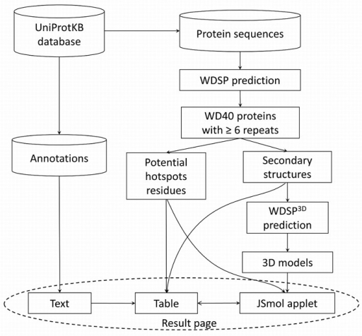 The framework of WDSPdb.