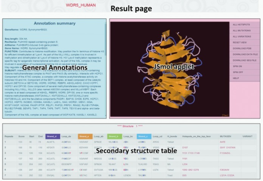 The result page for each identified WD40-repeat protein, which comprises general annotation from UniProt database, JSmol applet presenting the predicted 3D structure and the detailed secondary structure table.