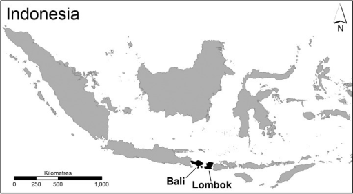 Location of Bali and Lombok in Indonesia (Source: Charles Sturt University).
