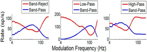 A–C, Three bandpass MTFs (blue, as in Fig. 2) with mid-frequency (A), high-frequency (B), and low-frequency (C) BMFs. MTFs for three model cells (red, as in Fig. 2) that are inhibited by the bandpass cells explain three other MTF types in the IC: the more common band-reject (A) and low-pass (B) MTFs, as well as the less common high-pass MTF (C). Model parameters are in Table 1.