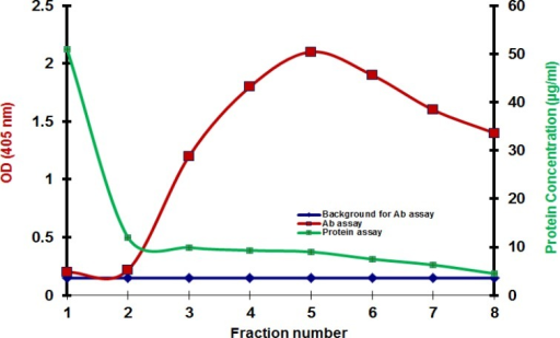 Results of immunoaffinity purification when the affinity beads are not blocked with BSA. Results of antibody assay and protein assay do not match. The left vertical scale shows ELISA results and the right vertical scale shows BCA results