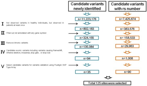 Variant filtering strategy of whole genome sequencing data.Overview of variant filtering to identify gCJD-related genes and gene variants. Each stage was processed followed by stage I–V.