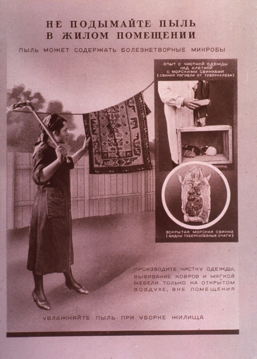 <p>A woman is beating a rug hanging from a line; insert to the right shows a dissected animal and pets in a cage. The poster appears to address the issue of cleanliness.</p>