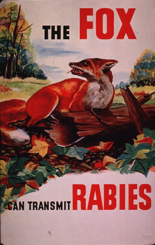 <p>Multicolor poster with black and red lettering.  Initial title words at top of poster.  Visual image is an illustration of a snarling fox in a woodland setting.  Foam drips from the animal's mouth.  Remaining text below illustration.</p>