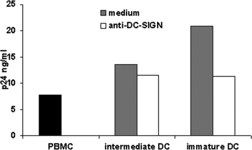 Clustered DC-SIGN molecules efficiently bind HIV-1 particles and infect PBMC. DC-SIGN on immature DCs enhances HIV-1 infection as measured in a DC-PBMC coculture. Either intermediate or immature DCs (1.5 × 106) were preincubated for 20 min at RT with or without blocking mAb against 20 μg/ml DC-SIGN (AZN-D1 and AZN-D2). Preincubated intermediate or immature DCs were pulsed for 2 h with HIV-1 (M-tropic HIV-1Ba-L strain), and unbound virus particles and mAb were washed away. Subsequently, DCs were cocultured with activated PBMC (1.5 × 106) for 7 d. Coculture supernatants were collected, and p24 antigen levels were measured by ELISA. Black histogram represents PBMC infected in the absence of DCs. One representative experiment out of two is shown.