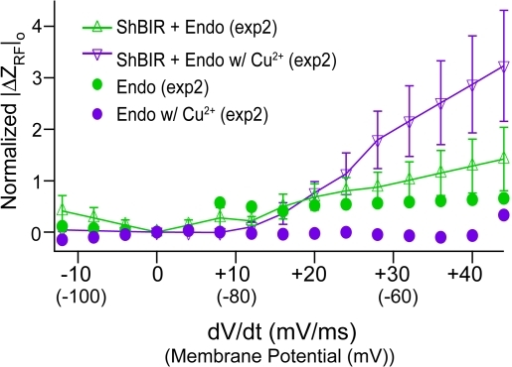 Onset RF Response in ShB-IR Expressing Oocytes.Changes in RF impedance during the onset of voltage-clamp (/ΔZRF/o, 0–1 ms after whole-cell depolarization) were slightly depressed in control oocytes with the addition of Cu2+ (Cu2+-free - green markers, Cu2+ addition - purple markers), but were significantly greater in ShB-IR expressing oocytes (Cu2+-free - green line, Cu2+ addition - purple line).