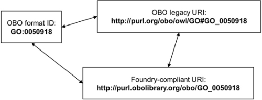 Mappings between OBO Ids and URIs A mapping between the existing OBO Ids, newly recommended Foundry-compliant URIs, and the URIs produced by the standard mapping, mentioned as OBO legacy URI. This figure has been taken from the draft of the recommendation, and refers to the mappings of Ids described in the recommendation document.