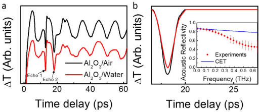 (a) Transient transmission changes (ΔT) obtained at a pump and probe wavelength of 400 nm with and without water. (b) Transient transmission changes induced by the acoustic waves reflected by the Al2O3/air or Al2O3/water after subtraction of the other contributions. Inset: Frequency dependent acoustic reflectivity obtained experimentally or using continuum elastic theory (CET).