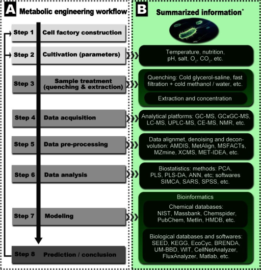 Flowchart and resources for terpenoid microbial metabolomics study. a Microbial metabolic engineering workflow. b Related information of each step for microbial metabolic engineering. * Selected resources: 1. MS data of B. subtilis metabolites (Coulier et al. 2006; Koek et al. 2006; Soga et al. 2003). 2. The metabolomics standards initiative (Fiehn et al. 2007). 3. Microbial metabolomics study examples for terpenoid biosynthesis (Paddon and Keasling 2014; Zhou et al. 2012). 4. Databases, software packages, and protocols (Thiele and Palsson 2010) and http://omictools.com/. 5. Genome-scale data of reconstructed B. subtilis metabolic net (impact of single-gene deletions on growth in B. subtilis) (Oh et al. 2007). 6. Comparative microbial metabolomics study of E. coli, B. subtilis, and S. cerevisiae (van der Werf et al. 2007). 7. The complete genome sequence of B. subtilis (Kunst et al. 1997). 8. Constraint-based modeling methods (Bordbar et al. 2014). 9. Software applications for flux balance analysis (including a software comparative list) (Lakshmanan et al. 2012). 10. Sample treatment methods (Jia et al. 2004; Larsson and Törnkvist 1996; Maharjan and Ferenci 2003; van der Werf et al. 2007; Villas-Bôas and Bruheim 2007)